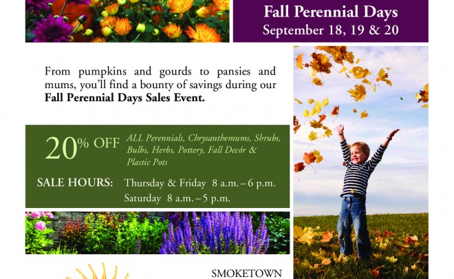 Fall Perennial Sale