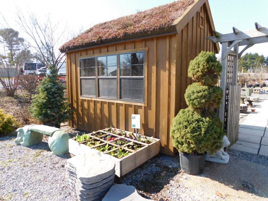 green roof & square foot garden