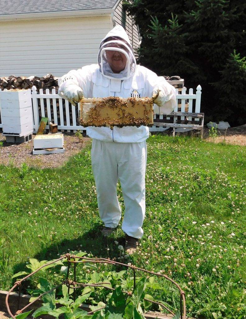 Larry holding an active honeycomb.