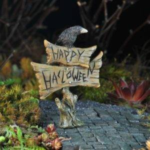 Halloween Fairy Garden Workshop @ Ken's Gardens Ronks Store | Gordonville | Pennsylvania | United States