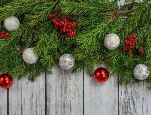 6 Tips for Taking Care of Your Live Christmas Decor
